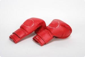 Box Gloves